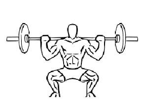 welke spieren gebruik je met de squat