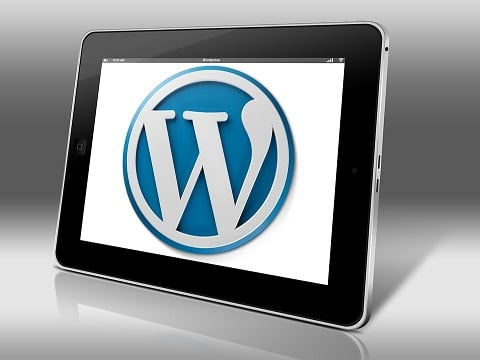 website bouwen in wordpress