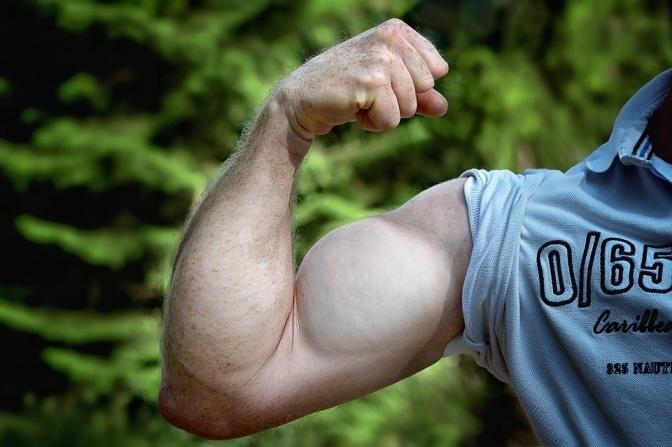 armspieren trainen zonder gewichten